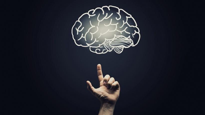 20160105180846-brain-psychological-psychology-thinking-network-smart-education-creative-pointing.jpeg
